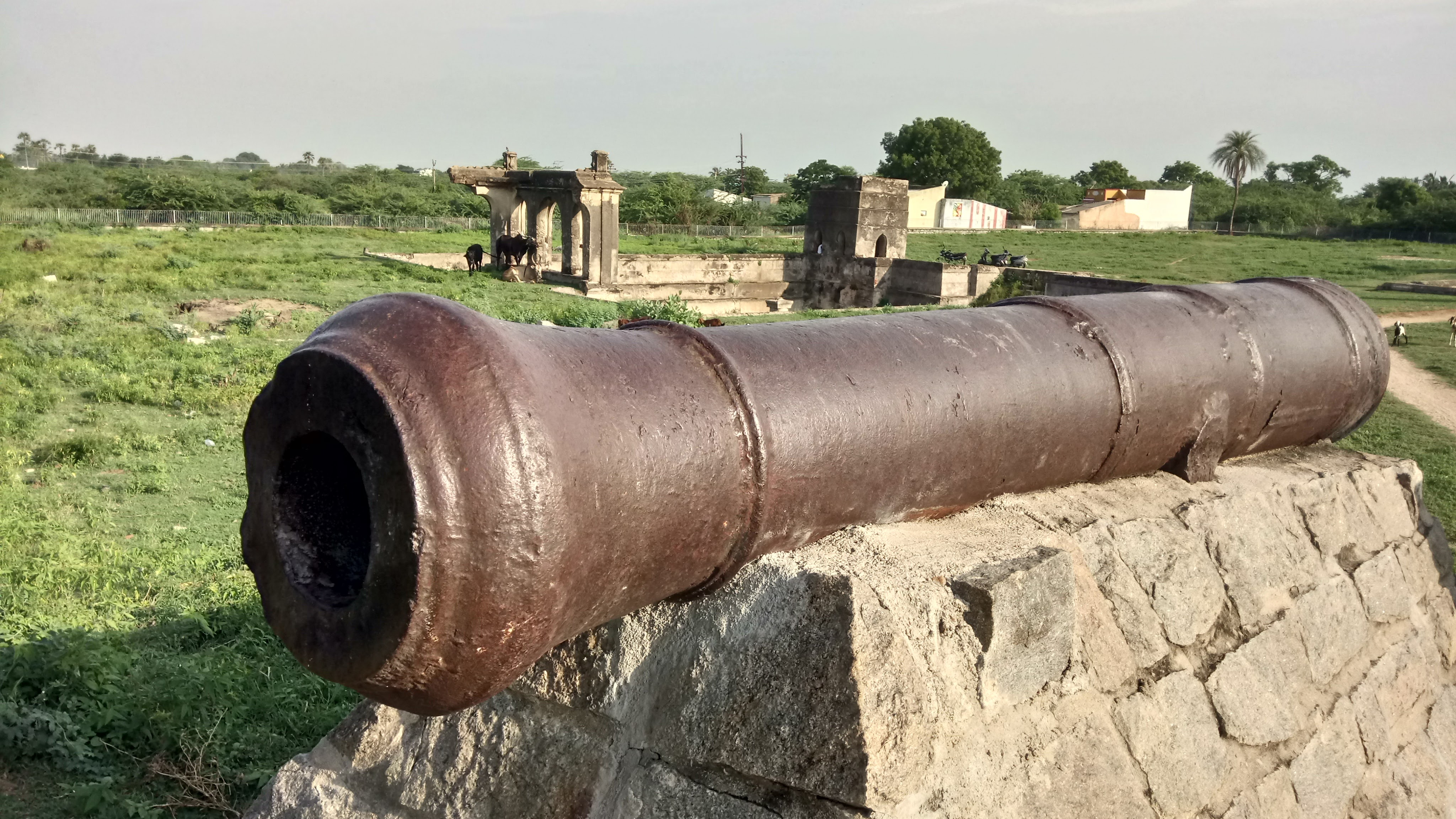 Siege of Arcot